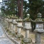 Nara 9